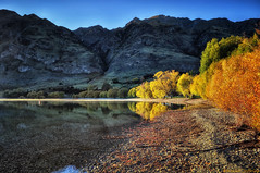 Reflections of Autumn (Kevin_Jeffries) Tags: new morning travel autumn light sea newzealand vacation mountain lake holiday colour reflection tree art nature water beauty contrast flickr pretty natur shoreline bluesky shore wanaka tranquil southernlakes flickrsbest glendhubay