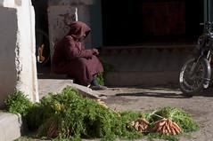 _DSC0405 (deborahmocci) Tags: africa people sahara village desert market south palm morocco arabian kasbah
