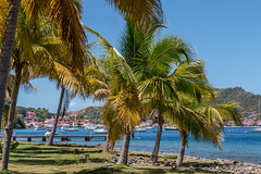Les Saintes - [Guadeloupe] (old.jhack) Tags: france caribbean guadeloupe antilles bourg baie lessaintes carabes sigma1750mmf28