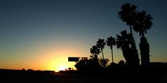 I-10 W Sunset (Aneonrib) Tags: california sunset silhouette 10 palm southern socal palmtree freeway ten interstate