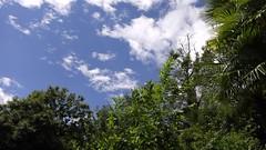 Gewerblicher Baustellen-Helikopter HB-ZCM über der Luxusresidenz Ronco la Monda. Der Helikopter rotiert bereits seit zwei Stunden über der Anlage. (王磊爱) Tags: schweiz tessin locarno lagomaggiore hubschrauber risiko lärm helikopter orselina krach lebensqualität gewerblich kernsanierung fluglärm langensee viapatocchi absturzrisiko roncolamonda