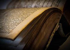 open book (Fay2603) Tags: old yellow writing buch book ancient pages alt indoor schrift antiquarian schrfentiefe antiquarisch vergilbt buchseiten
