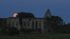 Strawberry moon (Gnome Girl!) Tags: moon night dusk ruin surrey fullmoon solstice priory 2016 strawberrymoon newarkpriory 20june2016