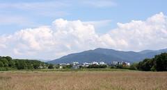 Rieselfeld landscape VI (tillwe) Tags: blue green clouds landscape freiburg blackforest tillwe rieselfeld 201605