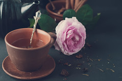 Cup of tea. Toned photo (lyule4ik) Tags: birthday pink wedding summer food white holiday flower cup nature beautiful beauty rose breakfast composition turkey festive table spring mix colorful day view purple tea drink top decorative background decoration egypt plate s ranunculus valentine fresh mothers frame present bunch florist botanic hydrangea concept decor arrangement overhead overview aroma chamomile