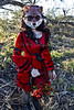 Through the woods 7487 (JoDi War) Tags: trees sunset red wild nature grass fairytale dark lost blood woods wolf dress boots lace gothic victorian velvet hood storybook rhyme grandmothershouse nurseryrhyme throughthewoods storytale