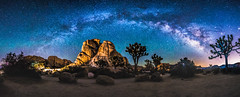 Hidden Valley Milky Way_ (sparkyloe) Tags: california ca trees light sunset sky panorama sun lightpainting mountains metal poster stars dessert photo losangeles sand rocks arch dynamic image metallic space postcard dream joshuatree illumination dramatic bluesky canvas safari explore galaxy hollywood fathersday dramaticsky greetingcard jt sundog cosmos clearsky iphone milkyway joshuatreenationalpark explored inexplore