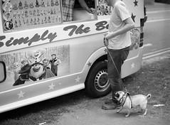 Pete & Monty at the ice cream van (Mark Hickford) Tags: pug monty mamiya m645 120 kodak trix 400 mediumformat oxford