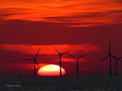 New Brighton Sunset (liverpix) Tags: newbrighton red spectacular sunset sun sky beautiful weather wind windfarm windpower windturbines