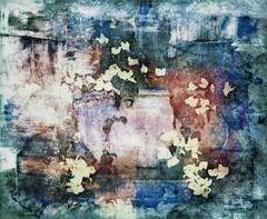 """Bougainvillea I"" (dijkase) Tags: bougainvillea stilllife floral abstract composite photography huntsville al showkasephotography colors digitalart"