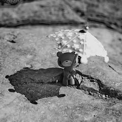 umbrella (  Pounkie  ) Tags: bear shadow blackandwhite bw umbrella river toy vacances gloomy mosaic mini rivire ombre gloomybear accessories urbanvinyl rocher accessoires jouet ourson noirblanc nounours medley ardche designertoy ombrelle artoyz pounkiestoyscollection