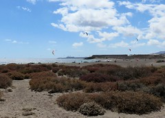 162 | Playa de la Tejita | kitesurfing (Mark & Naomi Iliff) Tags: espaa beach islands spain canarias kitesurfing espana tenerife naturist canary canaries islas playadelatejita