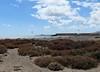 162 | Playa de la Tejita | kitesurfing (Mark & Naomi Iliff) Tags: españa beach islands spain canarias kitesurfing espana tenerife naturist canary canaries islas playadelatejita