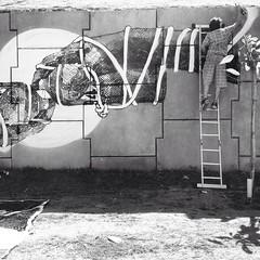 (izolag) Tags: streetart art colors graffiti stencil arte kunst pb urbanart dos urbana grafite recreio gravura bandeirantes estencil spraydaily