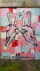 Snotrag...Dunedin, New Zealand... (colourourcity) Tags: newzealand streetart graffiti awesome nz otago dunedin snotrag dunedinstreetart colourourcity streetartdunedin coulourourcitynz