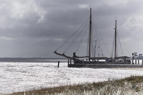 Amrum Nordsee Island