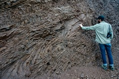 Layers (Deni.Zaneva) Tags: california rocks marin bayarea headlands geology