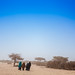 Colours in a dusty landscape, Somaliland