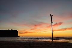 Mona Vale sunrise (solarfractal) Tags: ocean sea seascape beach sunrise landscape sydney pelican monavale