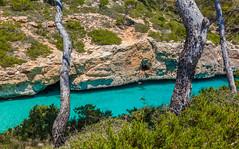 _MG_3811 (ro3duda) Tags: trip beach swimming island spain insel mallorca balearen 2016