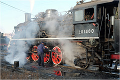 Greasing the Wheels (Welsh Gold) Tags: china morning republic shift steam peoples locomotive northwestern province preparations liaoning fuxin sy1460