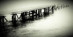 disappearing pier into dangerous waters (Morag.) Tags: blackandwhite bw white mist lake black water monochrome digital mono scotland pier nikon noiretblanc loch nikkor lochlomond noire d3300