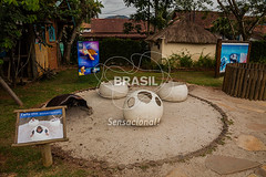 SE_Ubatuba0291 (Visit Brasil) Tags: horizontal arquitetura brasil ubatuba sopaulo natureza cultura ecoturismo externa patrimnio sudeste semgente projetotamar diurna brasil|sudeste brasil|sudeste|sopaulo brasil|sudeste|sopaulo|ubatuba brasil|sudeste|sopaulo|ubatuba|projetotamar