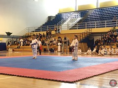stefanou_15_5_2016_knockdown_69