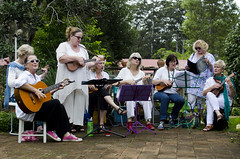 Ukulele band - creating connected communities - (toshiography) Tags: music community singing ukulele group scenic culture everyone rim belong songs connection tamborine