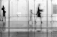 F_DSC4154-2-BW-Nikon D300S-Nikkor 16-85mm-May Lee  (May-margy) Tags: portrait bw blur reflection window silhouette bokeh taiwan frame    taipeicity         repofchina nikkor1685mm nikond300s maymargy maylee  mylensandmyimagination streetviewphotographytaiwan  naturalcoincidencethrumylens  linesformandlightandshadows   fdsc41542bw