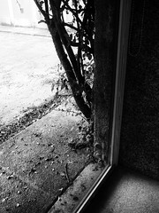 078.2016 (Francisco (PortoPortugal)) Tags: light shadow bw portugal pb porto franciscooliveira portografiaassociaofotogrficadoporto 0782016 20150424fpbo10472