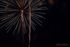 Dandelion (Lihoman...) Tags: light abstract art lines painting fire long exposure fireworks spot flare form unreal burst splash shape sparks feuerwerk     lihoman