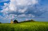 Palomares perdidos (Jesus_l) Tags: españa europa palencia palomares camposdecastilla boadadecampos jesúsl