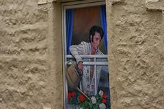 Elvis (arawnthompson) Tags: street flowers art king elvis illusion presley theking clever watering