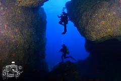 Bajo de Dentro (ShaunMYeo) Tags: espaa spain espanha scubadiving espagne cabodepalos spanien spagna spanje spnn spania underwaterphotography  espanya  hispania hiszpania ispanija espanja ispanya spanyolorszg panlsko ikelite hispaania underwaterphotographer spanyol  hispanio    spanja ispaniya sepanyol  panija panielsko  espainiako     spinn  espay   spnija  spanj