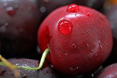 Cherry (Mah Nava) Tags: kirsch kirsche cherry red rot drops