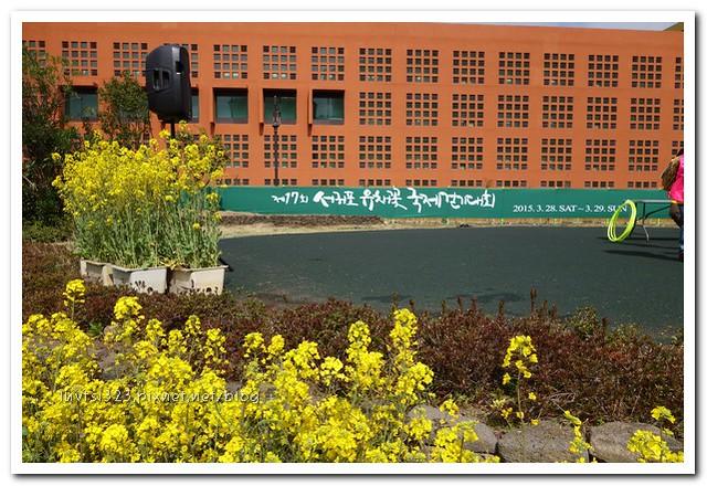 사귀포유체꽃축제11