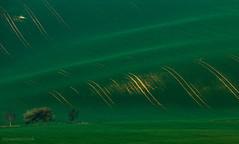 Moravia, Czech, April 2015 (Anya Semeniouk *Wesna*) Tags: nature landscape spring colours czech naturallight geometria moravia        southmoravia