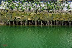 Bilboko itsasadarra. Estuary of Bilbao. Ra de Bilbao. Bilbo. Bizkaia. Euskal Herria (Basque Country). 2015.04.20 (Tx.rekords.EH.) Tags: de country estuary bilbao bizkaia basque bilbo euskal herria ra bilboko itsasadarra