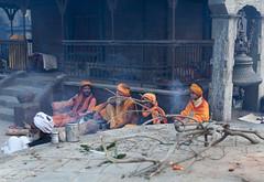 (Sbastien Pineau) Tags: nepal temple fire asia raw branch kathmandu asie fuego templo rama feu pineau pashupatinath branche npal  bagmati kathmandou sdhu    nepl sbastienpineau