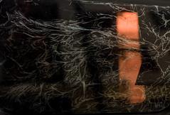 20150417 (zzkt) Tags: light brussels texture pattern f14 bruxelles be brussel bruxxel iso160 brüsel leicasummiluxm35mmf14asph leicam9 ¹⁄₁₀₀₀sec ¹⁄₁₀₀₀secatf14