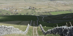 Mastiles Lane 2 (bingleyman2) Tags: track yorkshire lane limestone walls dales undulating mastiles