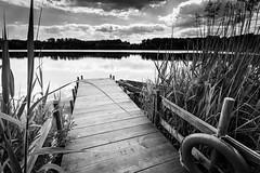 Badesee (edisa_photos) Tags: germany see schwarzwald badesee