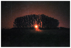 *** (Spartaxus) Tags: trees fog rollei sunrise pentax iso400 mesuper redbird ciechanów