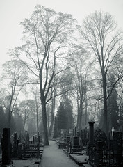 Depth (trm42) Tags: cemetery fog suomi finland evening spring helsinki cemetary ilta hietaniemi sumu