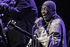B.B. King (Culture Shlock) Tags: portrait people music men portraits guitar blues legends lucille bluesguitar bluessingers