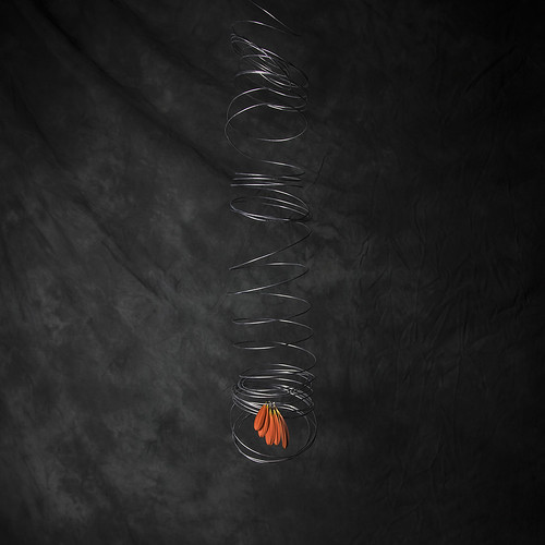 #1 Wire