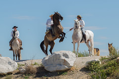 Andalusia (Pieter Mooij) Tags: horses andaluca es pferde mlaga spanje paarden