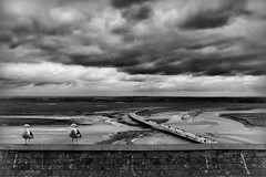 Another Day Another Load of Tourists! (Missy Jussy) Tags: trip travel sea sky people france bus tourism water monochrome clouds canon landscape mono blackwhite europe rooftops footbridge transport tourists estuary walkways normandy englishchannel baie baiedumontsaintmichel lemontsaintmichel roadbridge seasideseagull cannon600d