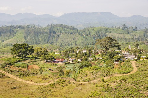 nuwara eliya - sri lanka 62